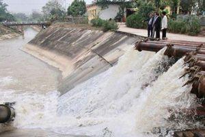 30% diện tích canh tác vụ Xuân 2020 của Hà Nội đã có nước