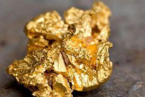 Nhựa thông thường có thể tạo ra vàng 18K khiến thế giới kinh ngạc