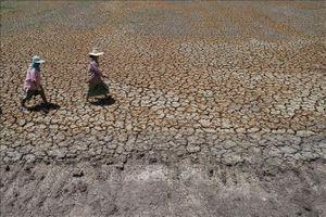 Thái Lan tăng cường đối phó với hạn hán