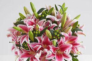 Những lưu ý khi chọn hoa ngày Tết