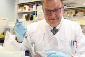 Phát hiện 'sốc' về loại tế bào tiêu diệt nhiều loại ung thư
