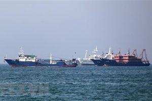 Iran quan ngại việc Hàn Quốc triển khai binh sỹ tới eo biển Hormuz