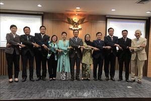 Việt Nam chủ trì phiên họp Hội đồng điều hành Viện Hòa bình và hòa giải ASEAN