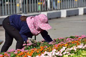 Người dân TP.HCM thưởng lãm đường hoa Nguyễn Huệ trước giờ khai mạc