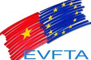 INTA khuyến nghị Nghị viện châu Âu phê chuẩn Hiệp định EVFTA và EVIPA