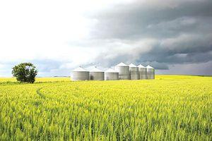 EU theo đuổi nền kinh tế xanh