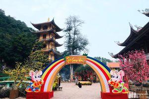 Lung linh cảnh sắc đón Tết Canh Tý ở chùa Cổ Am