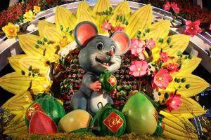 Cần Thơ: Hơn 80.000 chậu hoa được trang trí tại Đường hoa