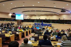 Hàng loạt báo Đức đưa tin INTA thuộc EP 'bật đèn xanh' cho EVFTA