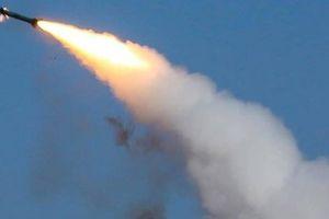Iran: Quân đội đã bắn 2 tên lửa TOR-M1 vào máy bay Ukraine