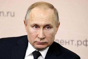 Nga cần một Tổng thống mạnh mẽ, chưa sẵn sàng cho chế độ cộng hòa nghị viện