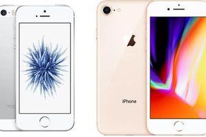 Apple sẽ bắt đầu sản xuất dòng iPhone 9 giá rẻ vào tháng 2