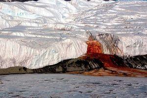 Bí mật của 'thác Máu' xuất hiện ở Nam Cực