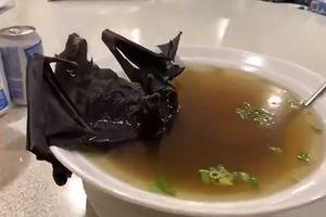 Canh dơi, món khoái khẩu ở Trung Quốc, là nguồn gốc của dịch viêm phổi cấp?