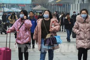 Đà Nẵng bàn phương án phòng chống dịch viêm phổi do virus corona