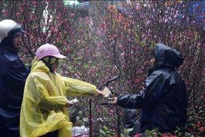 Ngày 30 Tết Canh Tý: Bắc bộ và Thanh Hóa có mưa, mưa rào