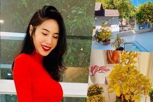 Thủy Tiên khoe vườn hoa rực rỡ, tự tay trang trí biệt thự triệu đô đón Tết
