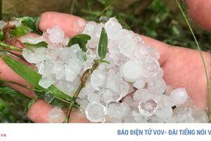 Mưa đá, dông lốc trong ngày 30, mùng 1 Tết khiến gần 12.000 nhà hư hại