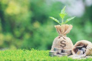 Xanh hóa dòng chảy tín dụng: Việc không thể chậm hơn