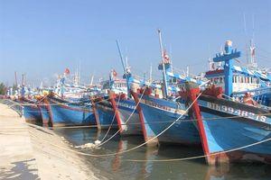 Dính 'thẻ vàng', xuất khẩu hải sản sang EU giảm