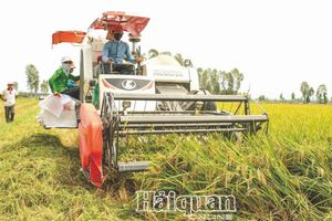 Nông nghiệp Việt Nam: Một năm vượt 'bão giông'
