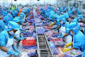 Xuất khẩu năm 2020 hướng tới mốc 300 tỷ USD