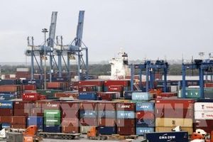 TP.HCM xây dựng chiến lược xuất khẩu - Bài 1: Xuất khẩu đang tăng trưởng theo chiều rộng