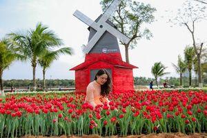 Hàng nghìn du khách ùn ùn đổ về chụp ảnh cùng hoa tulip tuyệt đẹp như trời Âu ở Hà Nội