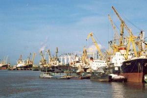 Từ tháng 3/2020, 50% tiền phí thu hàng hải nộp vào ngân sách Trung ương