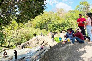 Gần 1.000 du khách tham quan rừng Thác Mai
