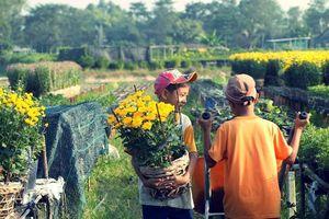 Lắng đọng cùng Xuân : Người của xuân năm cũ
