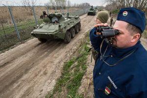 Hungary: 50 người nhập cư tìm cách vượt hàng rào biên giới