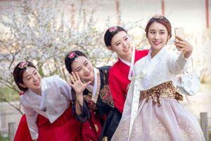 'Ác mộng' gặp họ hàng dịp Tết, người trẻ Hàn quyết không về nhà