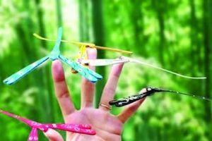 Chuồn chuồn tre - nơi lưu giữ ký ức tuổi thơ