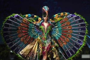 19 trang phục độc đáo của dàn thí sinh Hoa hậu Hoàn vũ