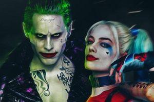 'Birds Of Prey': Nữ diễn viên Margot Robbie giải thích cho sự vắng mặt của Joker