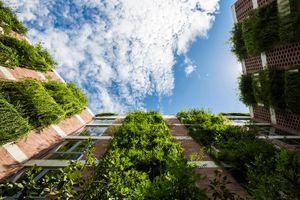 'Đột nhập' khách sạn cây xanh ở Đà Nẵng báo Mỹ hết lời ca ngợi