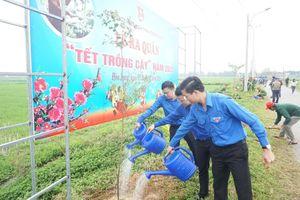 Tuổi trẻ Đà Nẵng ra quân Tết trồng cây Xuân Canh Tý
