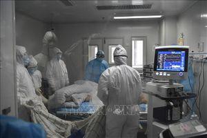 Dịch viêm đường hô hấp cấp do nCoV: Ai Cập cách ly công dân trở về từ thành phố Vũ Hán