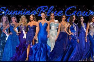 Thầm thương trộm nhớ trước những Hoa hậu 'phải lòng' với sắc xanh Hoàng gia trên sân khấu Miss Universe