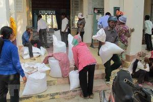 Hàng nghìn tấn gạo hỗ trợ đã được trao tận tay cho bà con