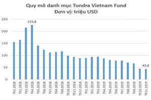 Vì sao Quỹ Tundra Vietnam 'lỗ đậm' với cổ phiếu FPT?