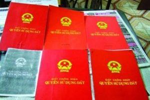 Nhờ người khác đứng tên trên 'Sổ đỏ': Chớ 'gửi trứng cho ác'
