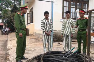 Đắk Nông: Tóm gọn 2 đối tượng trộm cáp quang đem bán
