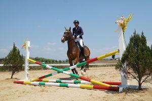 Ra mắt Câu lạc bộ cưỡi ngựa Olympic tại Lâm Đồng