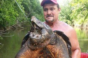 Bắt được 'thủy quái' rùa cá sấu khủng cực quý hiếm