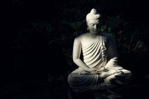 Suy ngẫm lời Phật dạy