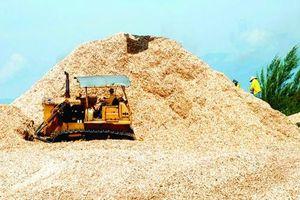 Đại dịch COVID -19 ảnh hưởng ra sao tới xuất khẩu dăm gỗ Việt Nam?