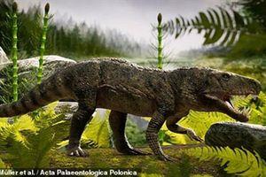 Phát hiện thú ăn thịt đáng sợ có vẻ ngoài giống cá sấu ở Brazil