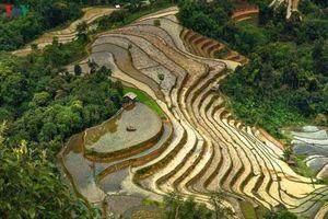 Choáng ngợp trước vẻ đẹp kỳ vĩ của mảnh đất địa đầu Hà Giang